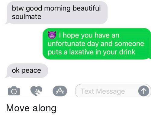 Beautiful, Relationships, and Texting: btw good morning beautiful  soulmate  I hope you have an  unfortunate day and someone  puts a laxative in your drink  ok peace  Text Message Move along