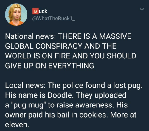"pug: Buck  @WhatTheBuck1_  National news: THERE IS A MASSIVE  GLOBAL CONSPIRACY AND THE  WORLD IS ON FIRE AND YOU SHOULD  GIVE UP ON EVERYTHING  Local news: The police found a lost pug.  His name is Doodle. They uploaded  a ""pug mug"" to raise awareness. His  owner paid his bail in cookies. More at  eleven."