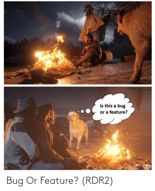 Rdr2: Bug Or Feature? (RDR2)