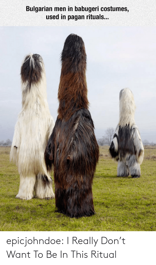 Dont Want To: Bulgarian men in babugeri costumes,  used in pagan rituals... epicjohndoe:  I Really Don't Want To Be In This Ritual
