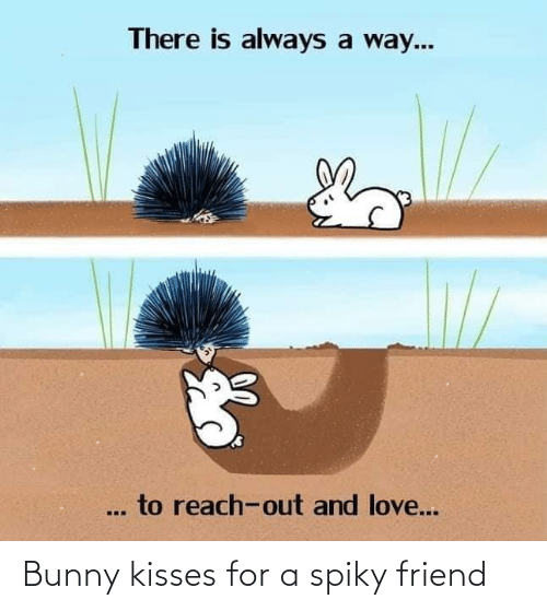 bunny: Bunny kisses for a spiky friend
