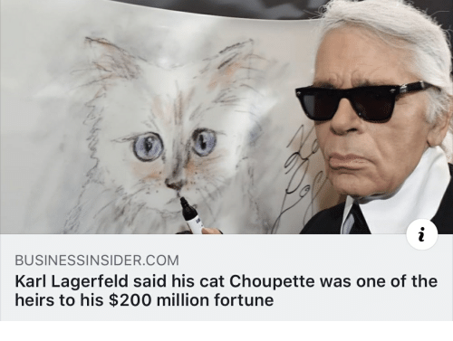 karl lagerfeld: BUSINESSINSIDER COM  Karl Lagerfeld said his cat Choupette was one of the  heirs to his $200 million fortune