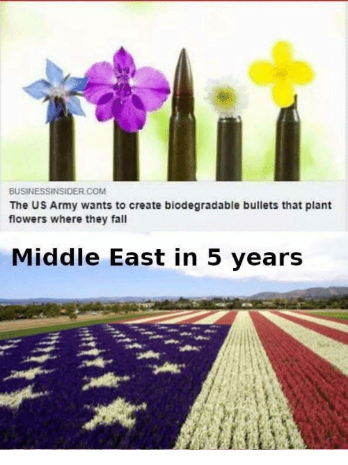Fall, Army, and Flowers: BUSINESSINSIDER COM  The US Army wants to create biodegradable bullets that plant  flowers where they fall  Middle East in 5 vears