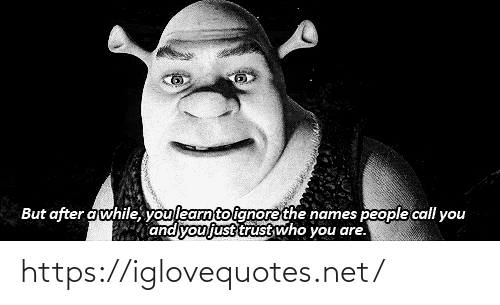 trust: But after awhile, youlearnto ignore the names people call you  and you just trust who you are. https://iglovequotes.net/