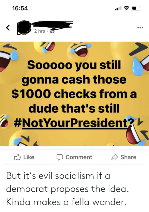 democrat: But it's evil socialism if a democrat proposes the idea. Kinda makes a fella wonder.