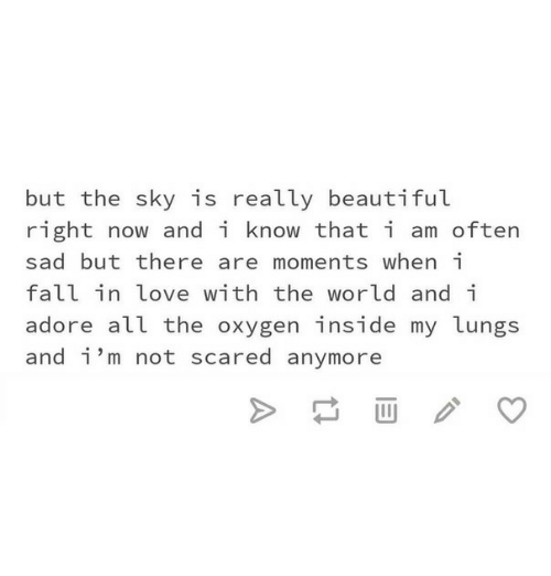 Beautiful, Fall, and Love: but the sky is really beautiful  right now and i know that i am often  sad but there are moments when i  fall in love with the world and i  adore all the oxygen inside my lungs  and i'm not scared anymore
