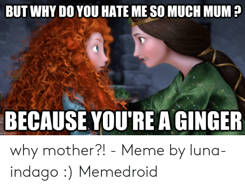 Red Hair Meme: BUT WHY DO YOU HATE ME SO MUCH MUM  BECAUSE YOU'RE A GINGER why mother?! - Meme by luna-indago :) Memedroid
