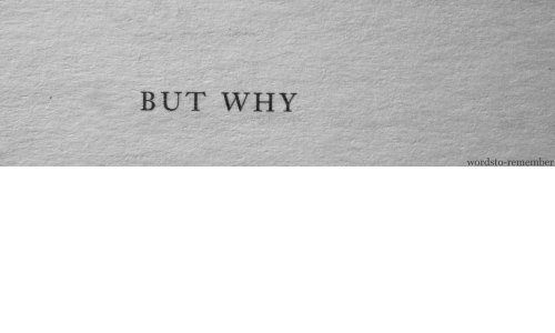 Why, Remember, and But: BUT WHY  wordsto-remember