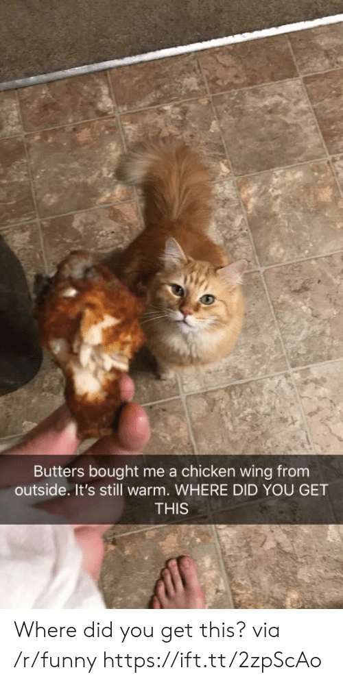 Funny, Chicken, and Via: Butters bought me a chicken wing from  outside. It's still warm. WHERE DID YOU GET  THIS Where did you get this? via /r/funny https://ift.tt/2zpScAo
