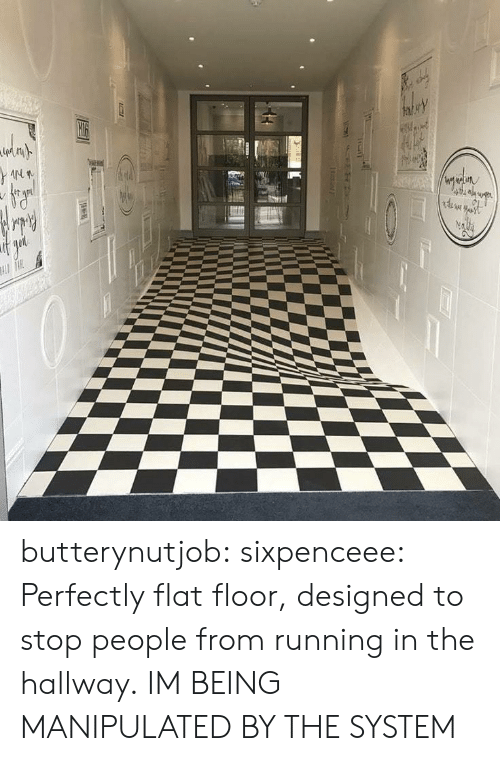 Running In The: butterynutjob: sixpenceee: Perfectly flat floor, designed to stop people from running in the hallway.  IM BEING MANIPULATED BY THE SYSTEM