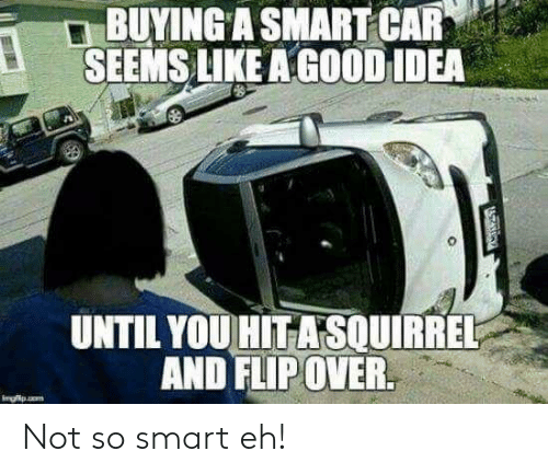 A Good Idea: BUYING A SMART CAR  SEEMS LIKE A GOOD IDEA  UNTIL YOU HITASOUIRREL  AND FLIP OVER.  Imgfp.o  ATARGY Not so smart eh!