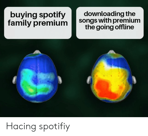 Buying Spotify Family Premium Downloading the Songs With Premium the