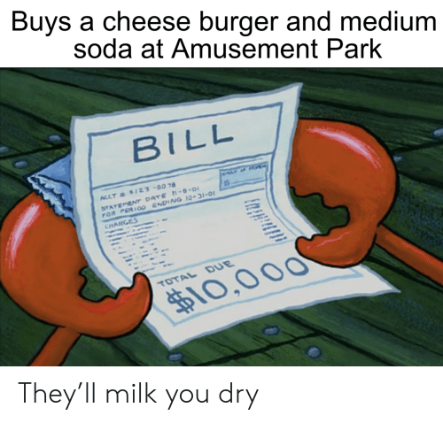 Soda, Date, and Medium: Buys a cheese burger and medium  soda at Amusement Park  BILL  ACCT& $1Z3-0078  STATEMENT DATE -8-0  FOR PERIO0 ENDING 10-31-01  CHARGES  TOTAL DUE  $10,000 They'll milk you dry