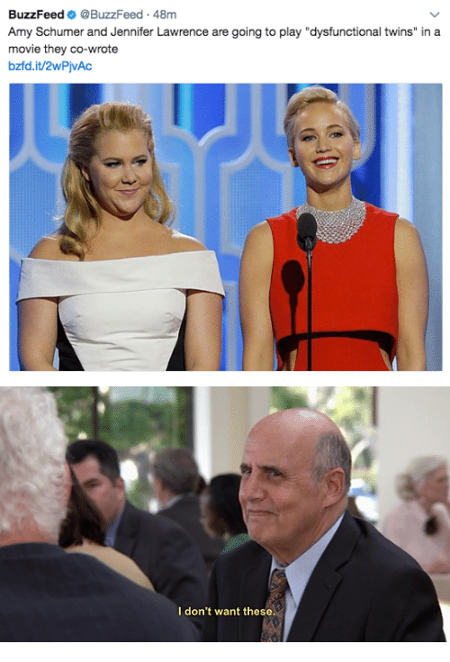 """dysfunctional: BuzzFeed @BuzzFeed 48m  Amy Schumer and Jennifer Lawrence are going to play """"dysfunctional twins"""" in a  movie they co-wrote  bzfd.it/2wPjvAc   I don't want these"""