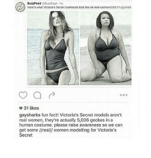 victorias secrets model: BuzzFeed  RBuzzFeud 1m  Here's what Victoria's Secret swimsuits look lke on real women bzrd. 1Jguad4  o o o  31 likes  gaysharks fun fact! Victoria's Secret models aren't  real women, they're actually 5,006 geckos in a  human costume. please raise awareness so we can  get some //realll women modelling for Victoria's  Secret
