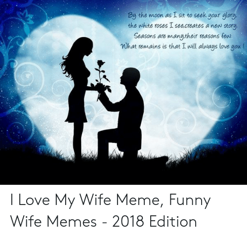 Love My Wife Meme: By the moon as I sit to seek your glory.  the white roses I see.creates a new story  Seasons are manu,their reasons few  Wh love nou (  at remains is that I will always I Love My Wife Meme, Funny Wife Memes - 2018 Edition