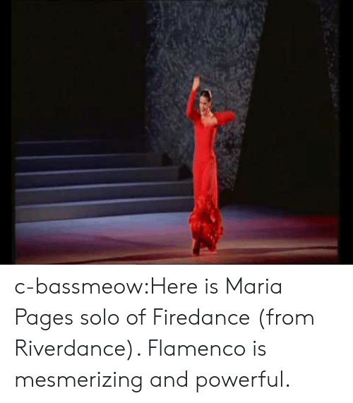 Tumblr, Blog, and Http: c-bassmeow:Here is Maria Pages solo of Firedance (from Riverdance). Flamenco is mesmerizing and powerful.