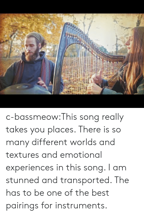 Tumblr, Best, and Blog: c-bassmeow:This song really takes you places. There is so many different worlds and textures and emotional experiences in this song. I am stunned and transported. The has to be one of the best pairings for instruments.
