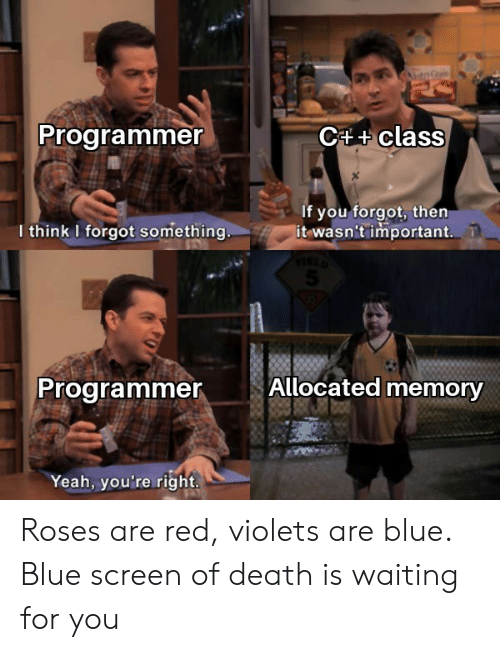Yeah, Blue, and Death: C4+class  Programmer  If you forgot, then  it wasn't important.  I think I forgot something..  Allocated memory  Programmer  Yeah, you're right. Roses are red, violets are blue. Blue screen of death is waiting for you