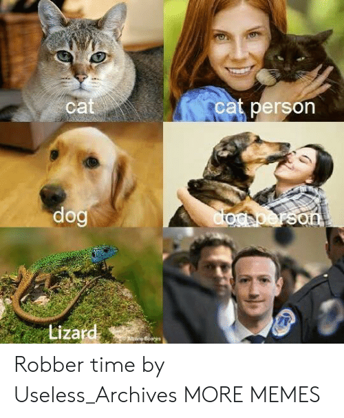 Cat Person: ca  cat person  Lizard Robber time by Useless_Archives MORE MEMES