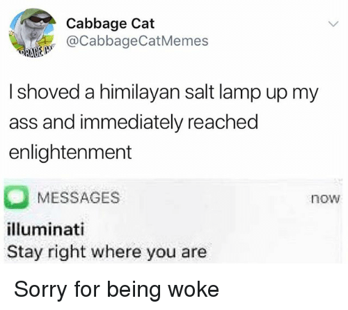 salt lamp: Cabbage Cat  @CabbageCatMemes  I shoved a himilayan salt lamp up my  ass and immediately reached  enlightenment  MESSAGES  lluminati  Stay right where you are  now Sorry for being woke