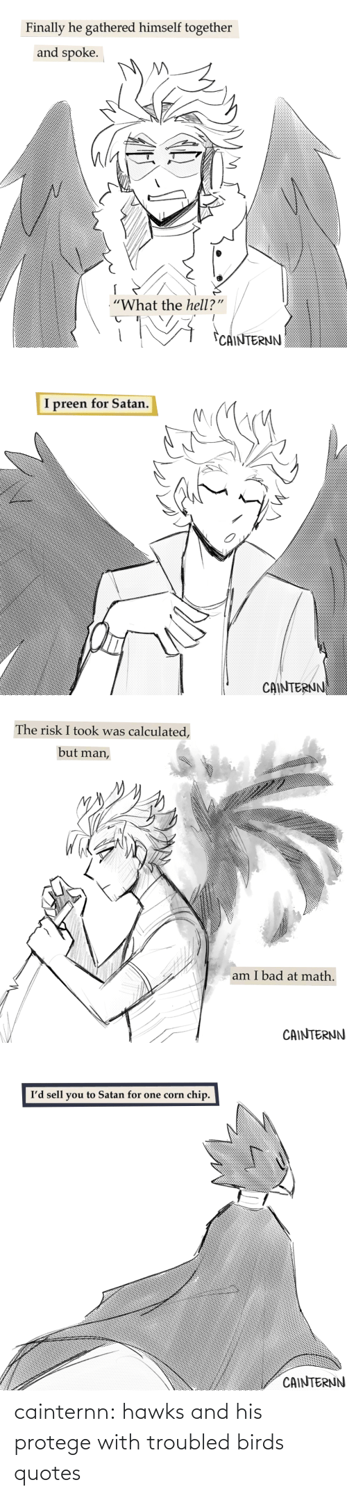 Birds: cainternn:  hawks and his protege with troubled birds quotes