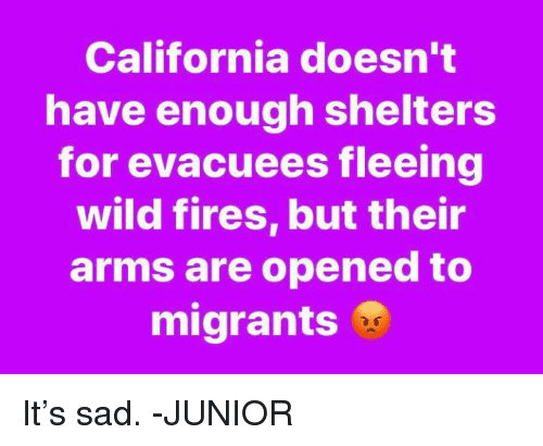 Memes, California, and Wild: California doesn't  have enough shelters  for evacuees fleeing  wild fires, but their  arms are opened to  migrants It's sad. -JUNIOR