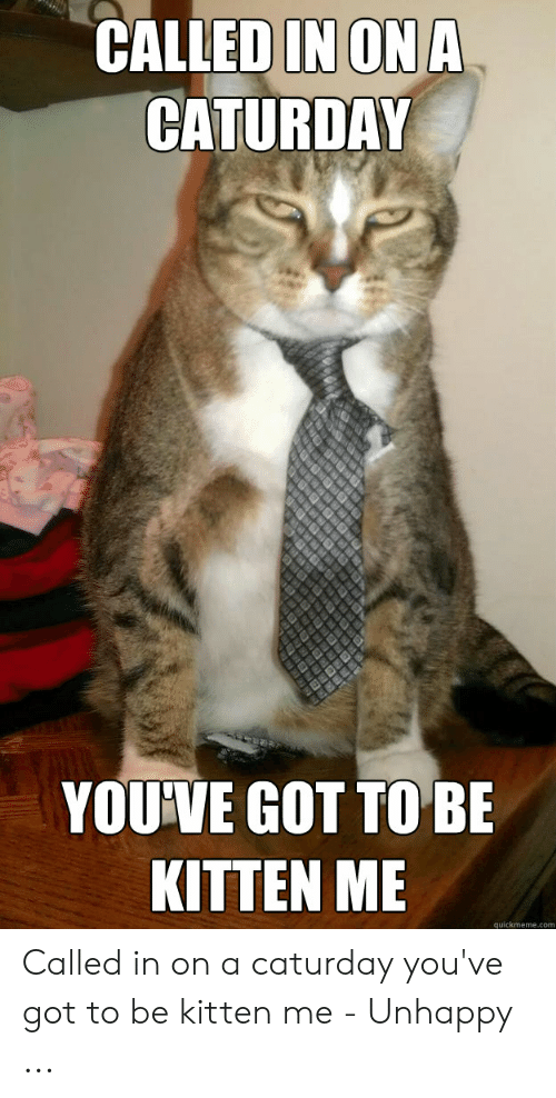 Caturday Meme: CALLED IN ONA  CATURDAY  YOUIVE GOT TO BE  KITTEN ME  quickmeme.com Called in on a caturday you've got to be kitten me - Unhappy ...