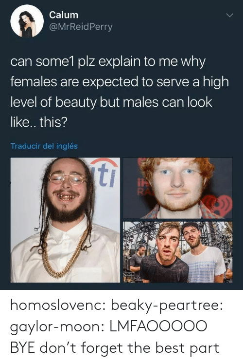 Gif, Tumblr, and Best: Calum  @MrReidPerry  can some1 plz explain to me why  females are expected to serve a high  level of beauty but males can look  like.. this?  Traducir del inglés homoslovenc:  beaky-peartree:  gaylor-moon:  LMFAOOOOO BYE  don't forget the best part
