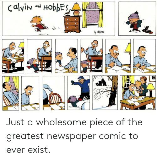 Ÿ˜˜: calvin and HobbES,A  PNP  y WATERSN Just a wholesome piece of the greatest newspaper comic to ever exist.