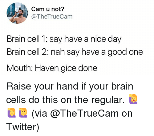 Dank, Twitter, and Brain: Cam u not?  @TheTrueCam  Brain cell 1: say have a nice day  Brain cell 2: nah say have a good one  Mouth: Haven gice done Raise your hand if your brain cells do this on the regular. 🙋‍♀️🙋‍♀️🙋‍♀️  (via @TheTrueCam on Twitter)
