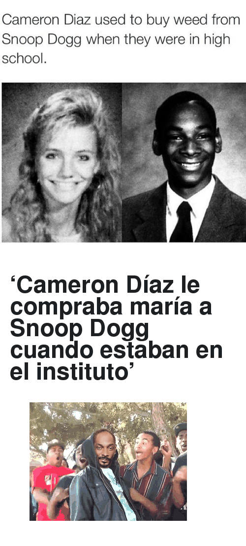 "Gif, School, and Snoop: Cameron Diaz used to buy weed from  Snoop Dogg when they were in high  school <h2>'Cameron Díaz le compraba maría a Snoop Dogg cuando estaban en el instituto'</h2><figure class=""tmblr-full"" data-orig-height=""240"" data-orig-width=""320""><img src=""https://78.media.tumblr.com/523b38273cb9d4ef22f8666abe135072/tumblr_nxy3ycoqZA1t04ld8o1_400.gif"" data-orig-height=""240"" data-orig-width=""320""/></figure>"