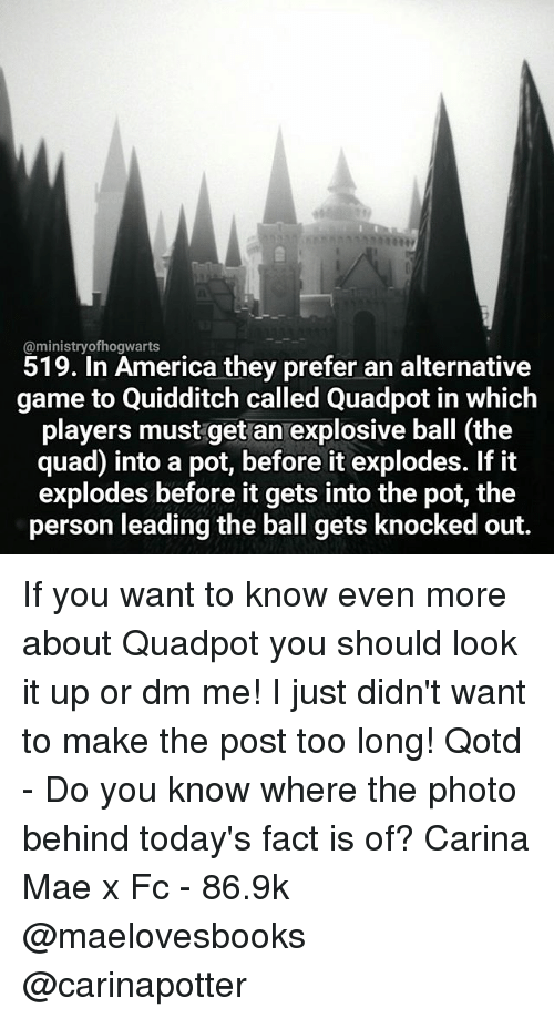 Quidditch: Caministryofhogwarts  519. In America they prefer an alternative  game to Quidditch called Quadpot in which  players must get an explosive ball (the  quad into a pot, before it explodes. If it  explodes before it gets into the pot, the  person leading the ball gets knocked out If you want to know even more about Quadpot you should look it up or dm me! I just didn't want to make the post too long! Qotd - Do you know where the photo behind today's fact is of? Carina Mae x Fc - 86.9k @maelovesbooks @carinapotter