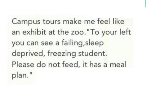 """failing: Campus tours make me feel like  an exhibit at the zoo.""""To your left  you can see a failing,sleep  deprived, freezing student.  Please do not feed, it has a meal  plan."""""""