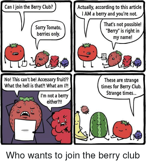 "Not Possible: Can I join the Berry Club?  Actually, according to this article  1 AM a berry and you're not.  Sorry Tomato,  berries only.  That's not possible!  ""Berry"" is right in  my name!  No! This can't be! Accessory fruit??  What the hell is that?! What am 1?  These are strange  times for Bery Club.  Strange times..  I'm not a berry  either?!! Who wants to join the berry club"