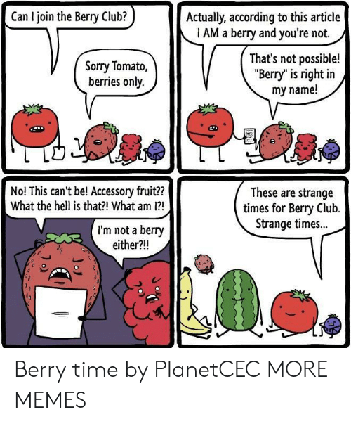"Not Possible: Can I join the Berry Club?  Actually, according to this article  1 AM a berry and you're not.  Sorry Tomato,  berries only.  That's not possible!  ""Berry"" is right in  my name!  No! This can't be! Accessory fruit??  What the hell is that?! What am 1?  These are strange  times for Bery Club.  Strange times..  I'm not a berry  either?!! Berry time by PlanetCEC MORE MEMES"