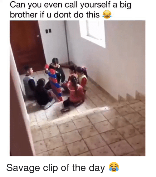 Funny, Savage, and Big Brother: Can you even call yourself a big  brother if u dont do this Savage clip of the day 😂