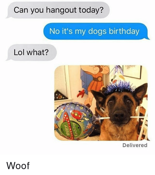 Birthday, Dogs, and Lol: Can you hangout today?  No it's my dogs birthday  Lol what?  Delivered Woof