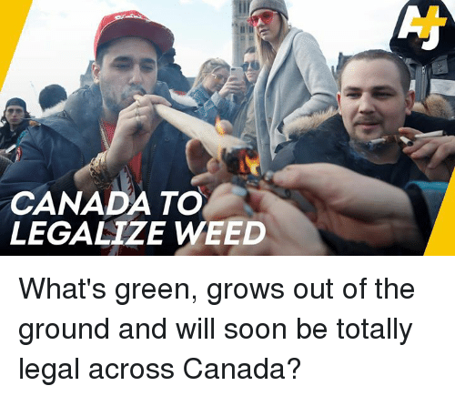 Memes, Soon..., and Weed: CANADA TO  LEGALIZE WEED What's green, grows out of the ground and will soon be totally legal across Canada?