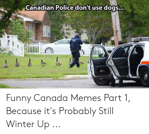 Funny Canada: Canadian Police don't use dogs.. Funny Canada Memes Part 1, Because it's Probably Still Winter Up ...