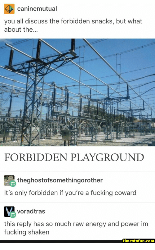 Energy, Fucking, and Power: caninemutual  you all discuss the forbidden snacks, but what  about the  FORBIDDEN PLAYGROUND  theghostofsomethingorother  It's only forbidden if you're a fucking coward  voradtras  this reply has so much raw energy and power im  fucking shaken  timestofun.com