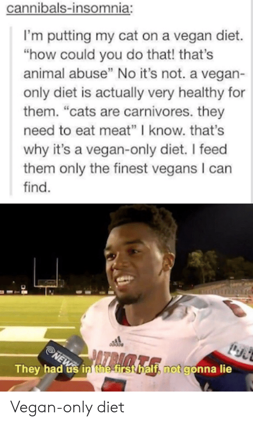 """No Its Not: cannibals-insomnia:  I'm putting my cat on a vegan diet.  """"how could you do that! that's  animal abuse"""" No it's not. a vegan-  only diet is actually very healthy for  them. """"cats are carnivores. they  need to eat meat"""" know. that's  why it's a vegan-only diet. I feed  them only the finest vegans I can  find.  They h  If, not gonna lie  ad usi Vegan-only diet"""
