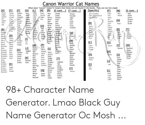 Canon Warrior Cat Names What Does Canon Mean? It Means That