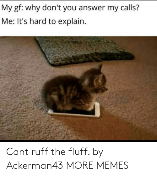 Cant: Cant ruff the fluff. by Ackerman43 MORE MEMES
