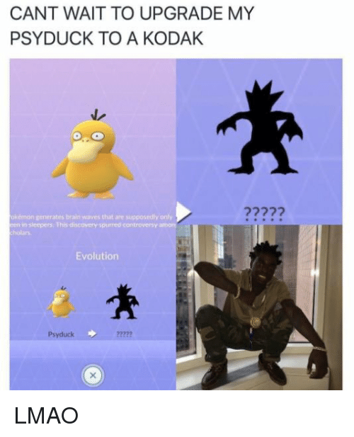 Psyduck: CANT WAIT TO UPGRADE MY  PSY DUCK TO A KODAK  n generates brain waves that are supposedly only  en insleeper This discovery purred controversy  amon  Evolution  Psyduck LMAO