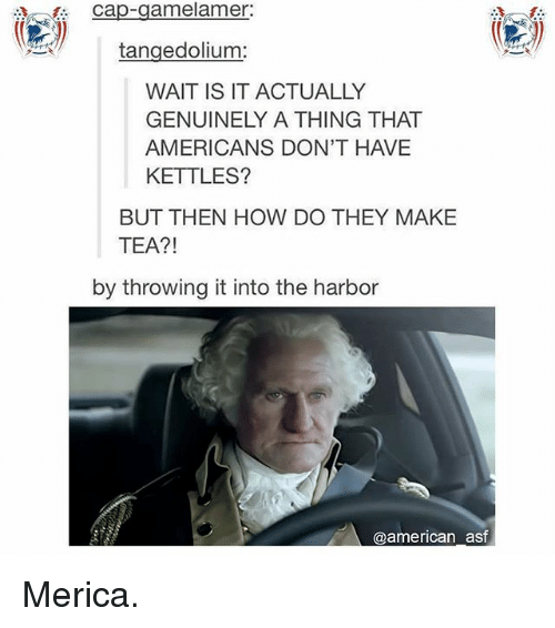 Capping: Cap-gamelamer:  tangedolium:  WAIT IS IT ACTUALLY  GENUINELY A THING THAT  AMERICANS DON'T HAVE  KETTLES?  BUT THEN HOW DO THEY MAKE  TEA?!  by throwing it into the harbor  @american asf Merica.