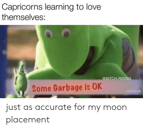 capricorns: Capricorns learning to love  themselves:  @BITCH.RISING  Some Garbage is OK just as accurate for my moon placement