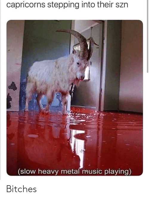 capricorns: capricorns stepping into their szn  (slow heavy metal music playing) Bitches