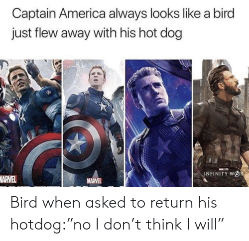 """hot dog: Captain America always looks like a bird  just flew away with his hot dog  INFINITY WOR  MARVEL  MARVEL Bird when asked to return his hotdog:""""no I don't think I will"""""""