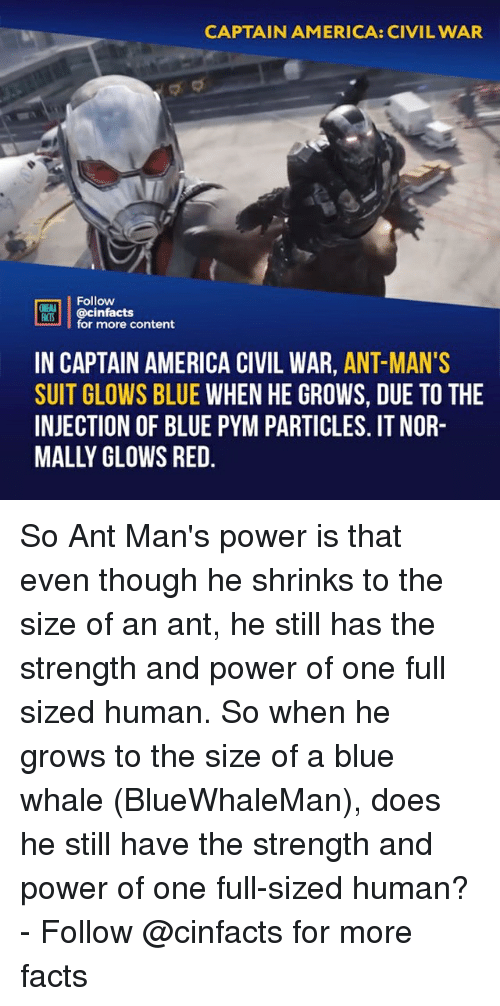 America, Captain America: Civil War, and Facts: CAPTAIN AMERICA: CIVIL WAR  Follow  OINENA  ACTS  REB İ | @cinfacts  for more content  IN CAPTAIN AMERICA CIVIL WAR, ANT-MAN'S  SUIT GLOWS BLUE WHEN HE GROWS, DUE TO THE  INJECTION OF BLUE PYM PARTICLES. IT NOR-  MALLY OLOWS RED So Ant Man's power is that even though he shrinks to the size of an ant, he still has the strength and power of one full sized human. So when he grows to the size of a blue whale (BlueWhaleMan), does he still have the strength and power of one full-sized human?⠀ -⠀ Follow @cinfacts for more facts